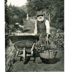 William Beavin, Knole Estate staff