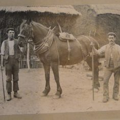 The Knole stables were busy places right up till after the First World War